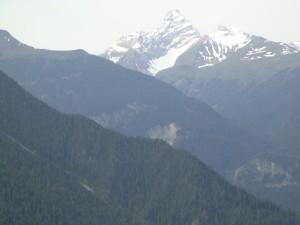 Switzerland - road side scenery